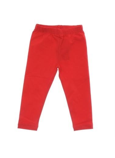 Panço Basic Uzun Tayt 9933251100 Kırmızı